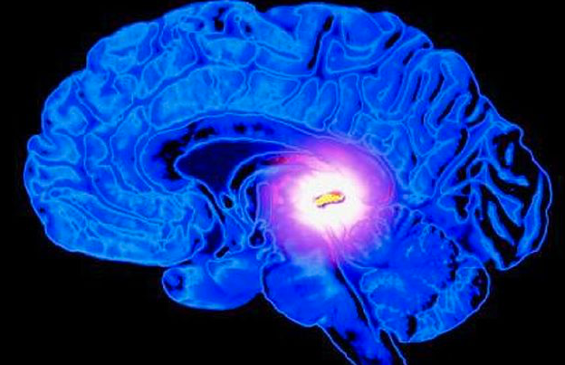 Meditation: Giftstoffe, die Entwicklung, Gesundheit & aufwachen blockieren